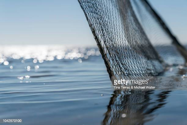 fishing net in the water. - north sea stock pictures, royalty-free photos & images