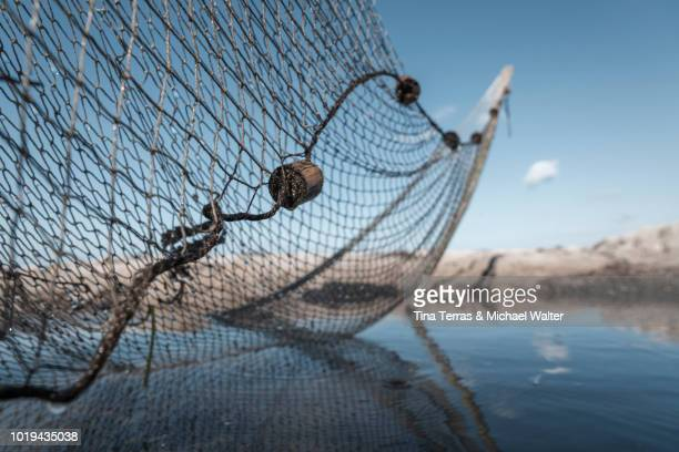 A fishing net on the beach in the water.