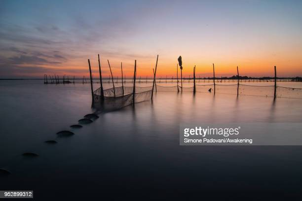 Fisherman Ivan Bognolo pulls up a 'viero' a wooden box where the moleche are placed to keep them fresh in the Giudecca island on April 29 2018 in...