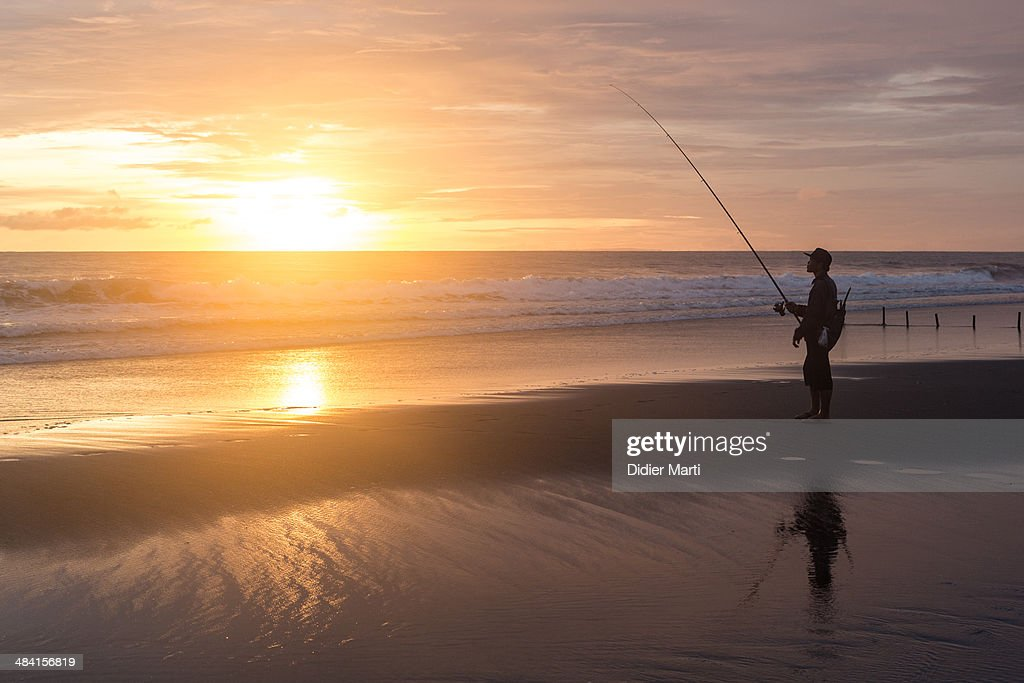 Gone Fishing... : News Photo