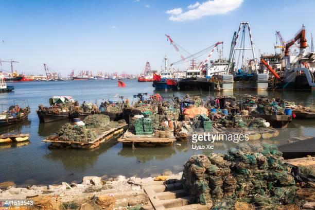 fishing - liyao xie bildbanksfoton och bilder