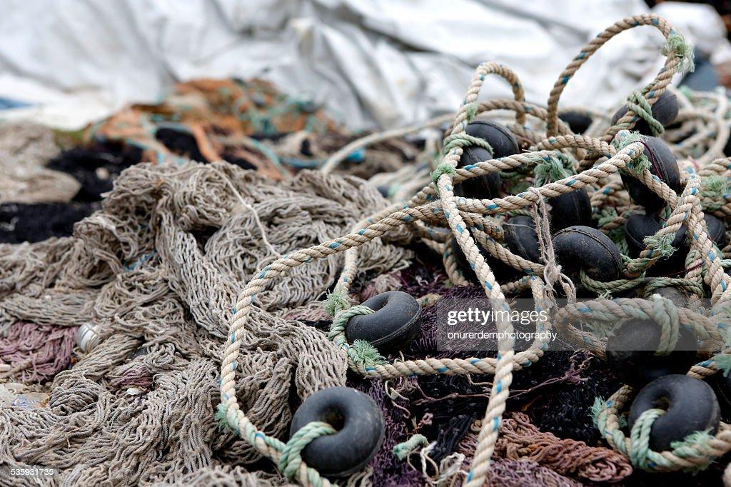 Fishing : Stock Photo