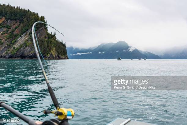 A Fishing Rod Bends Over As A Halibut Hits The Line, Foggy Kenai Mountains In The Background, Resurrection Bay, South-Central Alaska