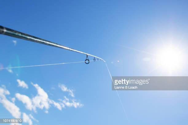 fishing rod - lianne loach stock pictures, royalty-free photos & images