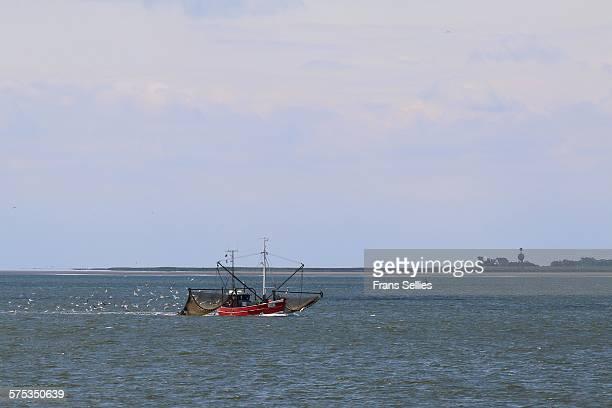 fishing trawler and tiny island neuwerk (germany) - frans sellies stockfoto's en -beelden