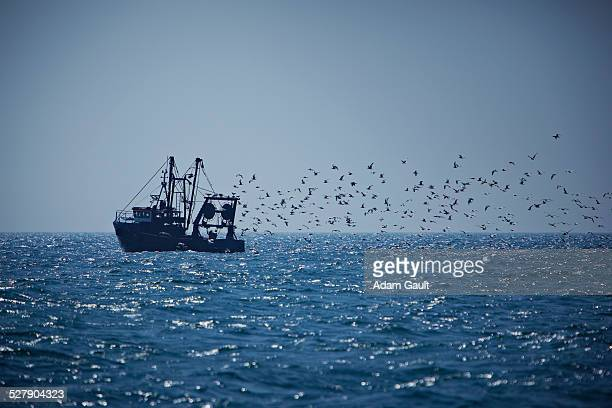 Fishing Trawler at Sea