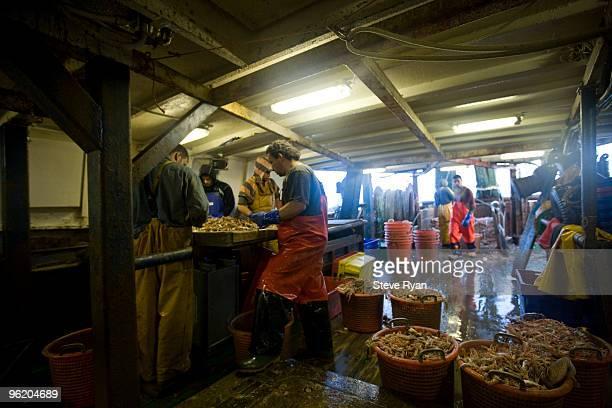 fishing trawler - solo adulti foto e immagini stock