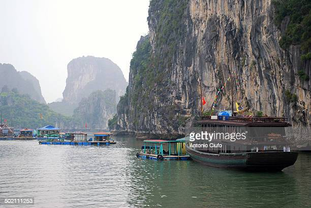 CONTENT] Fishing village in Halong Bay Vietnam A community of about 1600 people living in Ha Long Bay survive by fishing and aquaculture