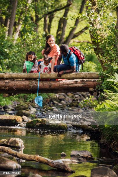 fishing with family - walking stock pictures, royalty-free photos & images