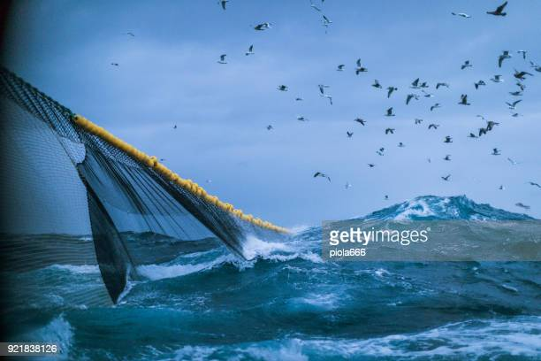 fishingboat vessel fishing in a rough sea - fishing industry stock pictures, royalty-free photos & images