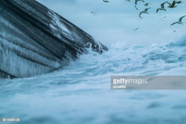 fishingboat vessel fishing in a rough sea - gannet stock photos and pictures