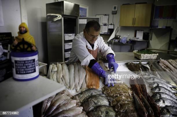 A fishmonger arranges a display of fresh fish including hake bream gurnard plaice pollock haddock sardines and squid at the Trelawney Fish Deli...