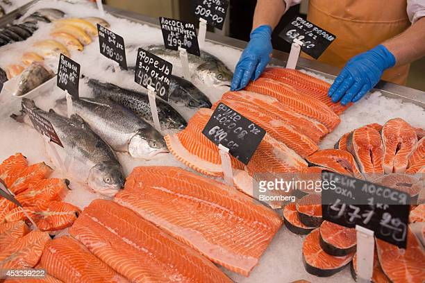 A fishmonger arranges a display of fresh imported Norwegian salmon cuts inside an OAO Magnit hypermarket in Krasnodar Russia on Thursday Aug 7 2014...