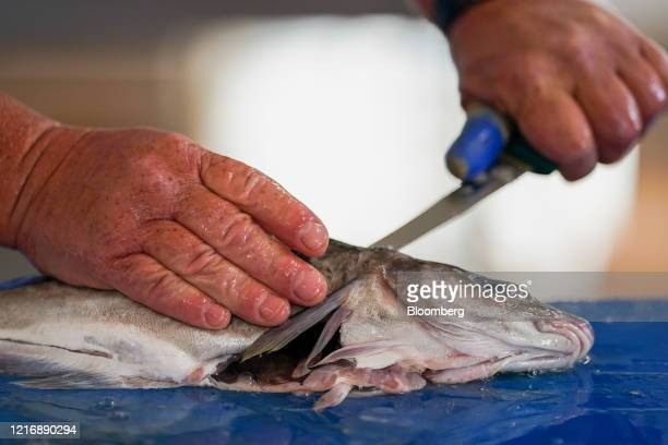 A fishmonger prepares a haddock in the harbour in Scarborough UK on Tuesday June 2 2020 The threat of a nodeal Brexit is back and with it the risk...