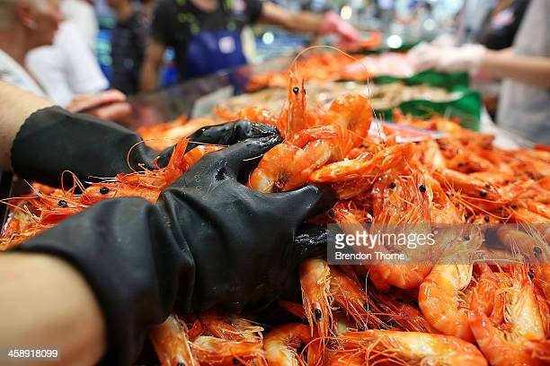 Fishmonger prepares fresh festive seafood supplies at the Sydney Fish Market on December 23 2013 in Sydney Australia The Sydney Fish Market...