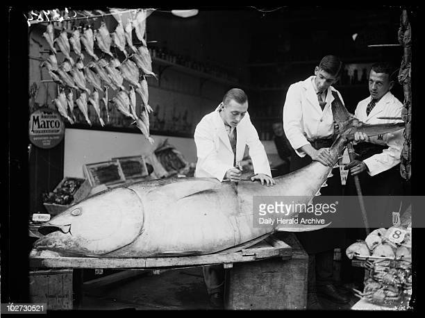 Fishmonger slicing into a giant tuna fish 1933 A photograph of a fishmonger slicing into a giant tunny or tuna fish taken by Leslie Cardew for the...