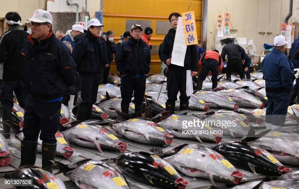 Fishmongers check bluefin tuna prior to the new year's first auction at the Tsukiji fish market in Tokyo on January 5 2018 Tokyo's famed and beloved...