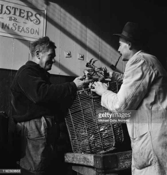 Fishmongers dealing crabs at a food market in London UK circa 1948