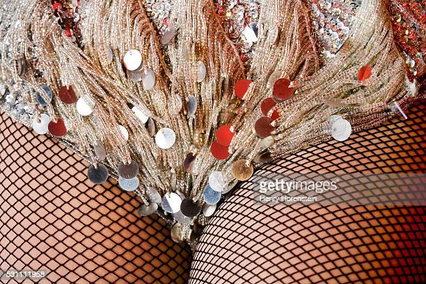 Fishnet Stockings and Sequined Fringe on Burlesque Dancer's Outfit