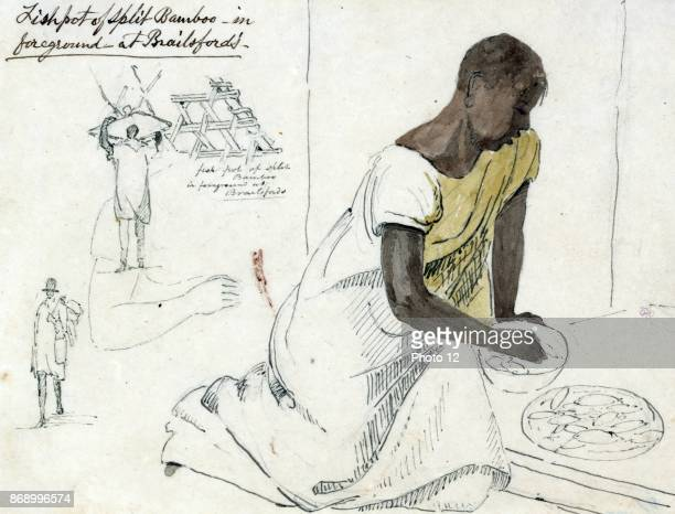 Fishpot of split bamboo in foreground at Brailsford's Jamaica In foreground woman with fish in a bowl in background various sketches