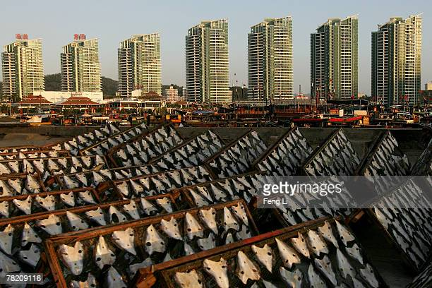 Fish's skin is aired and shone in a small fishing village near Sanya Harbor on November 30 2007 in Sanya of Hainan province China The real estate...