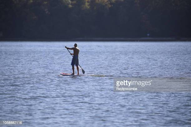 fit bare chested middle aged man paddle boarding past brownsea island in poole harbour off the south coat of england - bare chested man foto e immagini stock