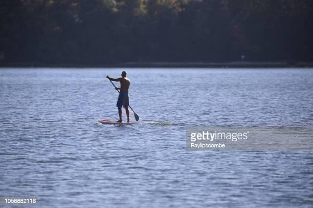 過去のブラウンシー島プールハーバー イングランドの南コートで搭乗裸胸中年の男パドルを合わせてください。 - プール湾 ストックフォトと画像