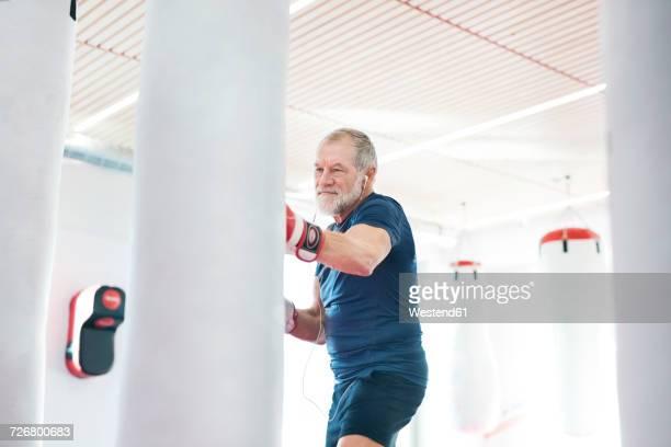 fit senior man in boxing gloves fighting - disruptaging stock-fotos und bilder