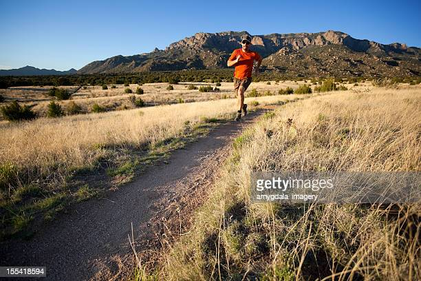 fitness - western juniper tree stock pictures, royalty-free photos & images