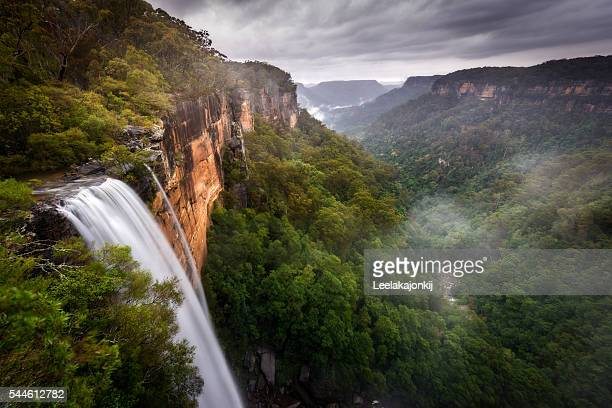 fitzroy falls - new south wales stock pictures, royalty-free photos & images