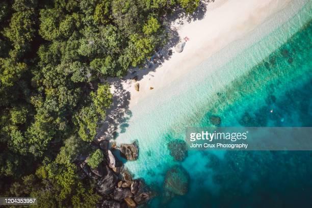 fitzroy island beach reef - ケアンズ ストックフォトと画像