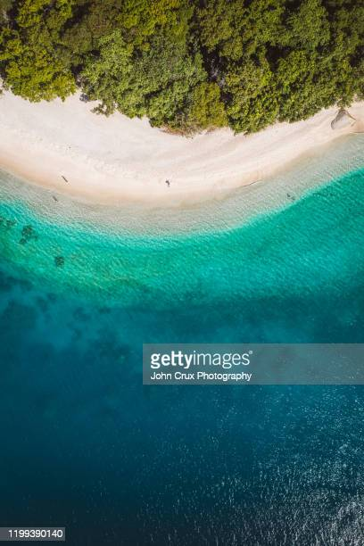 fitzroy island reef from above - great barrier reef aerial stock pictures, royalty-free photos & images