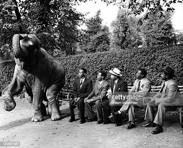 Five chiefs from Tanganyika with 'Dumbo' the elephant in London Zoo, London, Great Britain, 28 September 1954. The chiefs are in Britain to study...
