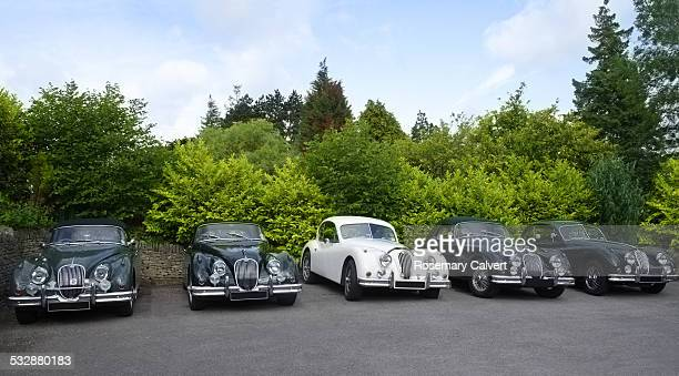 Five classic XK Jaguar cars from the 1950s parked in a row part of the 1950s culture in Britain