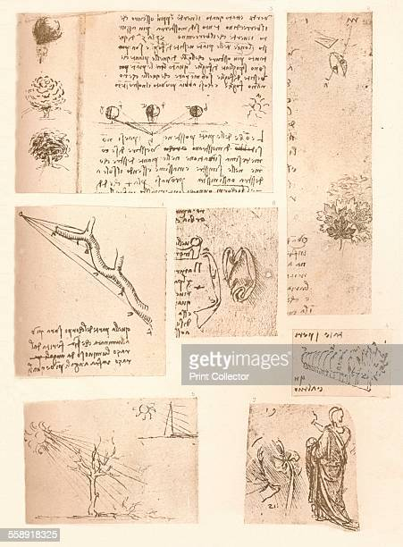 Five drawings illustrating the elements of landscape painting c1472c1519 From The Literary Works of Leonardo Da Vinci Vol 1 by Jean Paul Richter PH...