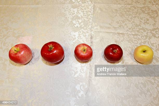 Five first place apples Ambrosia Honeycrisp Salish Macintosh and Golden Delicious at The Royal Agricultural Winter Fair at Exhibition Place