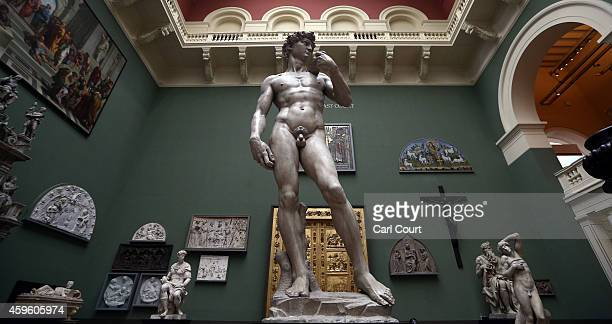 A five metre high cast of Michelangelo's David is pictured during a press preview for the newly renovated Weston Cast Court at the Victoria and...