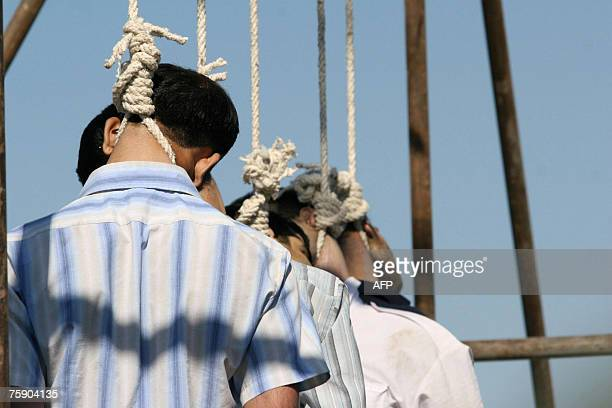 Five people hang limply from the nooses after they were executed in Iran's holy second city of Mashhad 01 August 2007 Iran hanged in public seven...