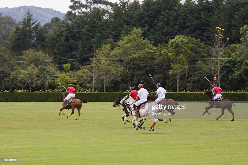 Five polo players playing polo : Foto de stock