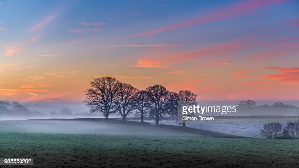 five sisters - worcestershire stock pictures, royalty-free photos & images