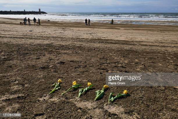 Five tulips are seen as relatives, friends and the surf community gather on The Hague Beach to mourn the loss of five surfers who drowned at sea a...