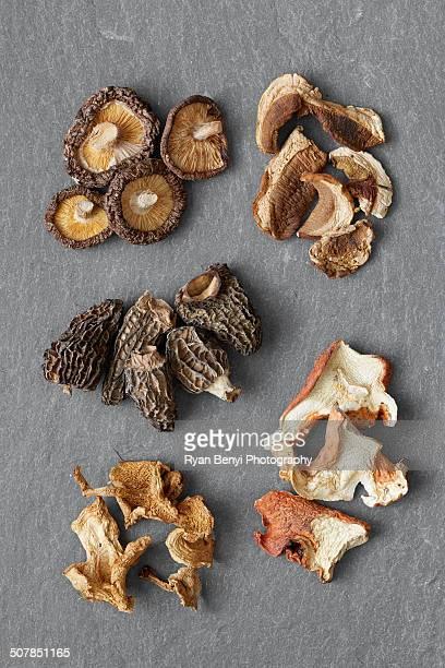 Five varieties of dried mushrooms: Shitake, Porcini, Morel, Hedgehog, Lobster