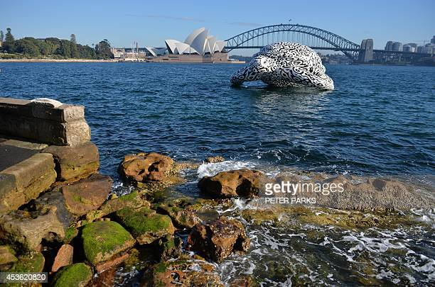 A fivemetre tall 15metre long inflatable sea turtle created by artist BJ Price is towed around Sydney Harbour past the iconic Harbour Bridge and...