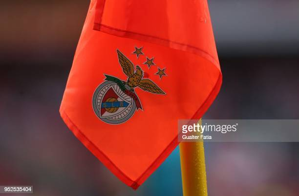 Fixture during the Primeira Liga match between SL Benfica and CD Tondela at Estadio da Luz on April 28 2018 in Lisbon Portugal