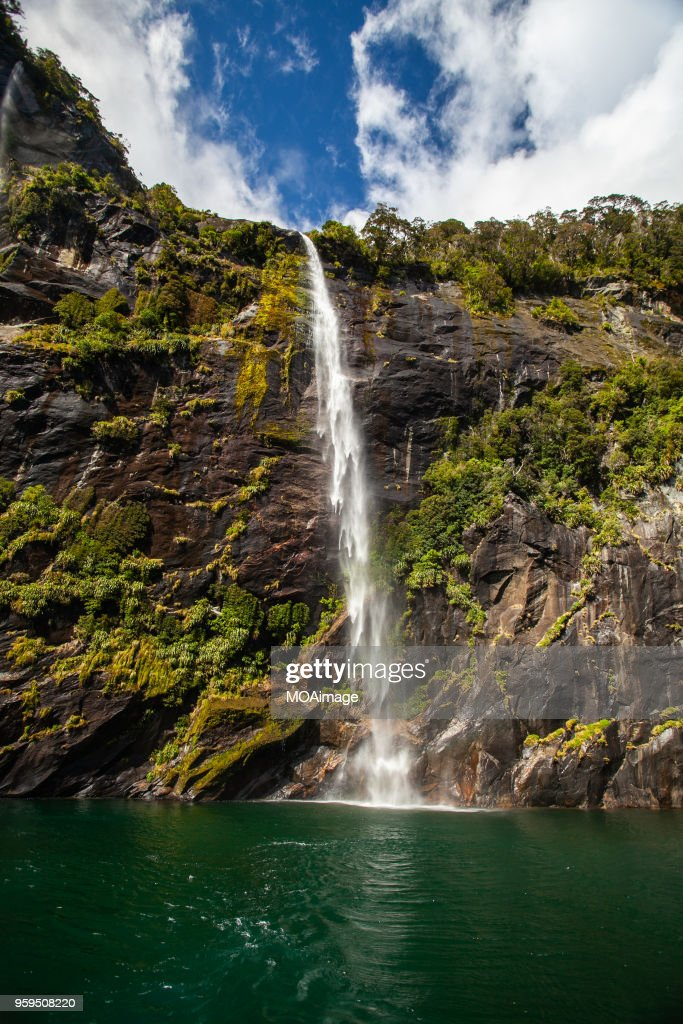 Fjord,South island scenery,New Zealand : Stock-Foto