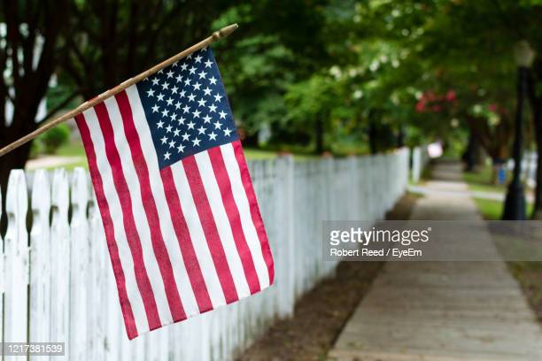 flag against trees - labour day stock pictures, royalty-free photos & images