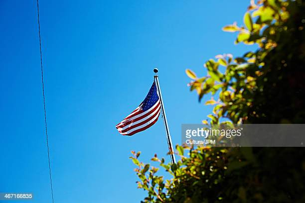 US flag and hedge against clear blue sky