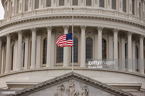 A flag in front of the US Capitol dome flies at halfstaff in Washington President Barack Obama ordered flags to be flown at halfstaff at the White...