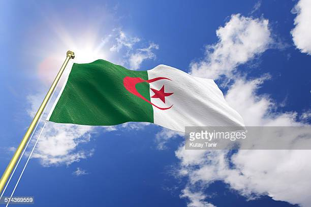 flag of algeria - algeria stock pictures, royalty-free photos & images