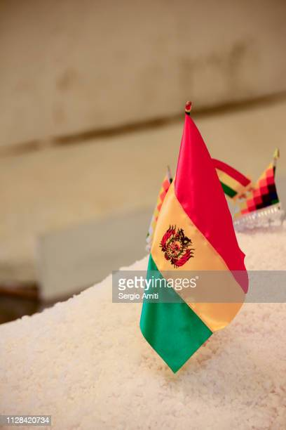 flag of bolivia on a mound of salt - bandera boliviana fotografías e imágenes de stock